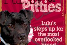 Lulu's Rescue - Pulling for Pitties
