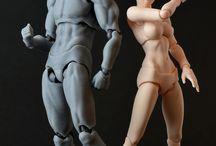 Estudo - anatomia / Itens relacionados à desenho e ilustração para estudo de  anatomia