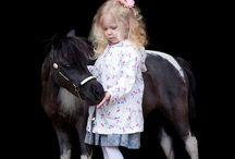Hannah's Board / My little sister Hannah loves Ponies!