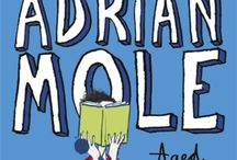 Book Cover (Adrian Mole)
