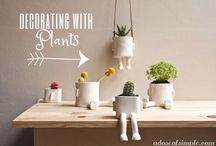 Descorating with Plants