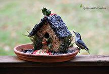 birdseed birhouse