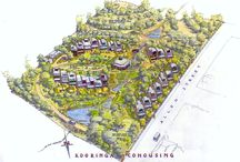 Eco housing - co housing ideas