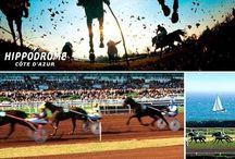 HIPPODROME de la Côte d'Azur / Deuxième champs de corse de province, l'Hippodrome de la Côte d'Azur organise plus de 80 réunions hippiques par an. D'une surface totale de 60 hectares, il peut accueillir 12 000 spectateurs dont 6 000 en tribune et dispose de 2 000 places de parking dans son enceinte. L'hippodrome de la Côte d'Azur a aussi pour vocation de servir de centre d'entraînement. www.pavillon-hippodrome.fr