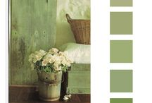 Colour Palettes and Mood Boards
