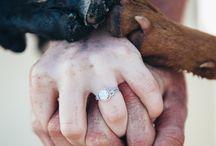 wedding engagement photos