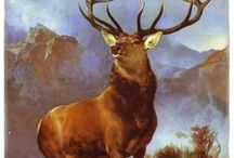 Deer Theme Gifts / Deer theme Gifts  are the perfect niche gift. / by Classic Legacy Custom Gifts