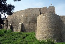 Old romanian fortresses,castles and palaces / by Roman Petru-gheorghe