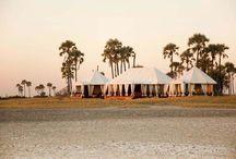 Luxury Botswana Safari Camps / Luxury Botswana Safari Lodges and Tented Camps | Luxury Safaris in Botswana | Luxury African Safaris | Ker Downey