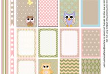 Stickers Owls