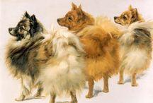 Honden in de kunst / Oude en nieuwe schilderijen met honden in de hoofdrol.