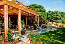 Backyard Boldness / Our 2016 trend takes a bolder approach to outdoor living. People are turning to new customization, lighting and movement to add a sense of whimsicality to their backyards. / by Garden Media Group