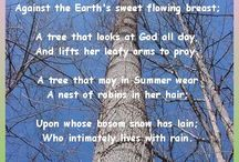 All the lovelyTREES / by Laura Marec