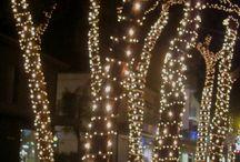 Inverno a Milano Marittima / Attimi d'inverno nella bella Milano Marittima - Hotel Al Cacciatore di Sogni