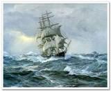 #8 Sailing Ships / by CritRz Art-N-Carp