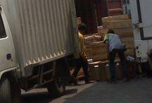 Cargo CPL Di Bekasi (Stuffing Container) / Jasa pengiriman, cargo, ekspedisi di Bekasi