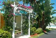 Pineapple Place / Pineapple Place is a small, well-kept property just across A-1-A Ocean Blvd. from one of South Florida's most pristine, award-winning Blue Wave beaches with lifeguards, a fishing pier and lighthouse. This White Glove Award-winner is rated nationally as a Superior Small Lodging. Enjoy one and two-bedroom apartments along with sparkling swimming pool, BBQ area and tropical landscaping. A coin laundry is also located on the property.