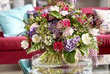 Blumen begleiten uns durch's Jahr / Blumen begleiten uns durch die verschiedenen Jahreszeiten. Fachverband Deutscher Floristen e.V./FDF und Blumenbüro haben florale Stimmungsbilder entwickelt, die typische jahreszeitliche Atmosphären spiegeln.