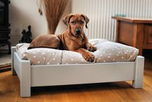 Dog bed ideas :)