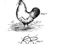 Spectacular Spectacles (Chickens Need Not Apply) / Eye-catching and Vintage Eyeglasses