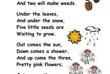 plants - primary