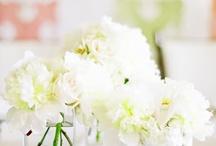 Reception Decor   Centerpieces   White