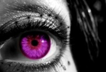 Eyes / by Bernadette Stronner