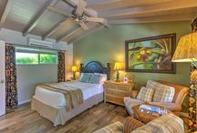 """Tropical Room at Colt's Lodge   Palm Springs CA / The Tropical Room at Colt's Lodge in Palm Springs is a fun tropical themed room with a garden view, Queen Sleep Number bed, and a 40"""" flat screen Smart TV."""