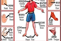 Hindi studies for kids