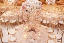 Wedding Reception Venues / Wedding reception ideas by Sarah Elliott Photography