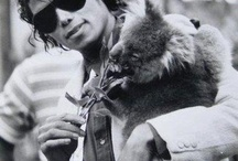 MJ animals