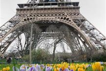 Spring around the world / Happy Spring