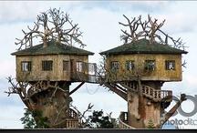 Tree & Rock Houses / by Debbie Beals