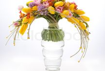 Vernal flower bouquets and arrangements