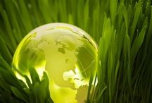 #Sustainability / Sustainability is the capacity to endure. In ecology the word describes how biological systems remain diverse and productive over time. Long-lived and healthy wetlands and forests are examples of sustainable biological systems. For humans, sustainability is the potential for long-term maintenance of well being, which has ecological, economic, political and cultural dimensions. http://ow.ly/VApeQ