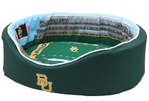 Pet Accessories (Baylor themed) / If you like Baylor, they like Baylor. End of story.   (besides, they look adorable in it)