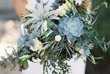 Airplant and succulent bouquets