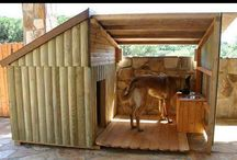 Doghouse ideas
