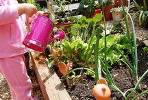 Gardening  & Composting
