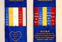 fair ribbons