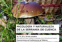 Sala Miradas / Exposiciones, conferencias, ferias... Un espacio abierto a tod@s en El Mirador