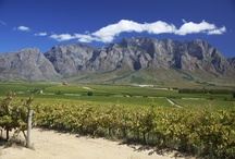 Vineyards of South Africa / Wine Estates and vineyards in South Africa