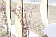 Wedding Backyard / Beach arbour
