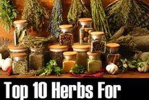 herbal gor migraines