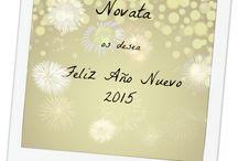 Año Nuevo / Entradas sobre el nuevo año
