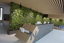 Озеленение в интерьере