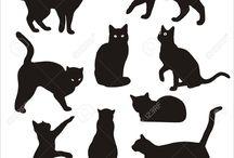 disegni gatto