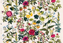 frowers print