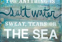 Sea and Shore / by Janet Sommer