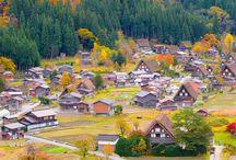 Magico Foliage / Scopri le destinazioni da vivere durante i magici mesi d'ottobre e novembre, quando la natura si tinge dei caldi colori d'autunno e si verifica il fenomeno del foliage.